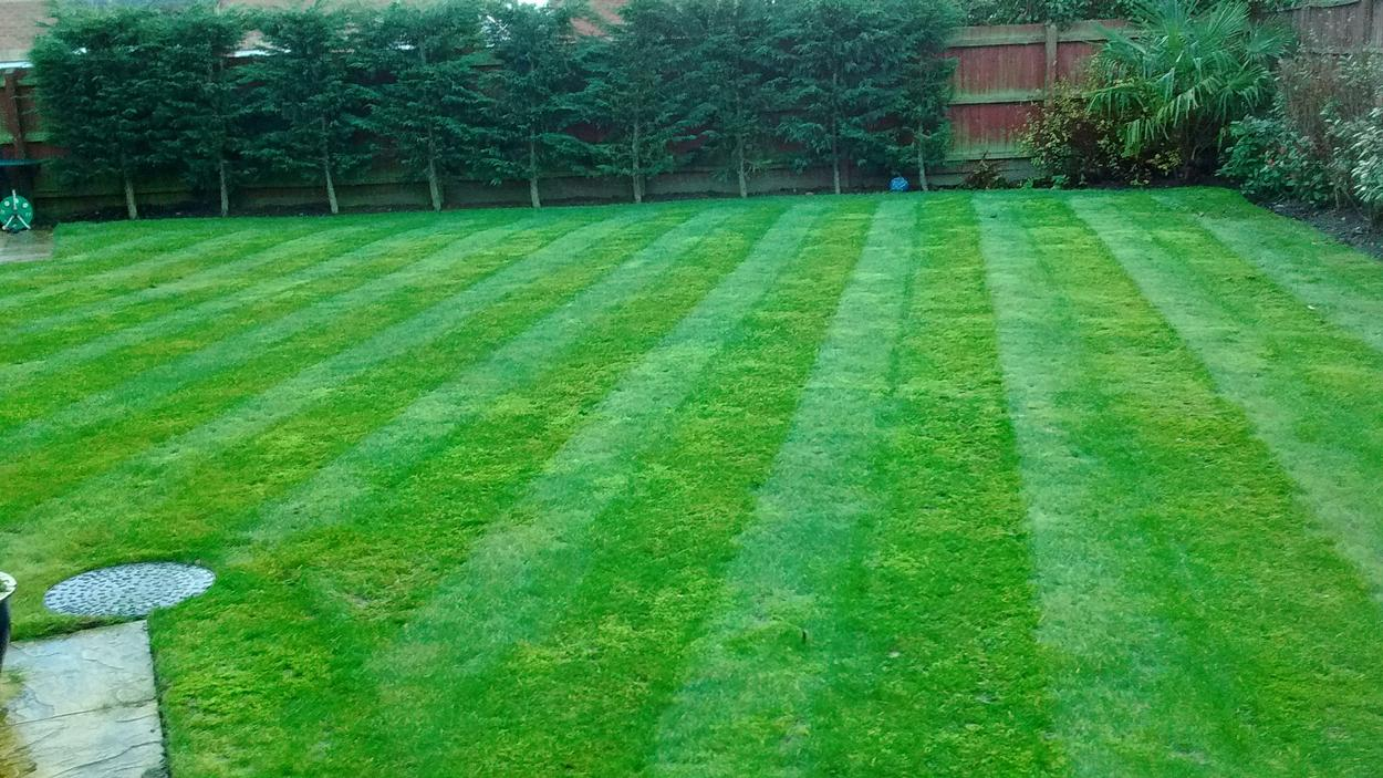 Domestic Lawn Care and Lawn Mowing in Lincolnshire by South Lincs Grass Care